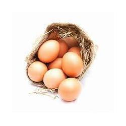 Huevos de campo agroecológicos